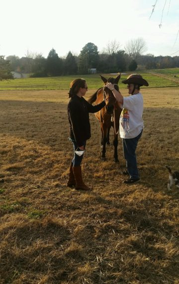 To Dream of Horses: Conquering Allergies and Fear